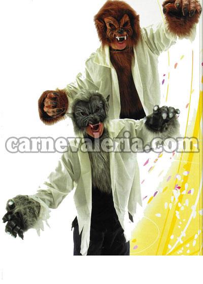 Simpatico cartone animato lupo carta da parati u carte da parati